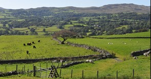 CPSG: Key information about the Countryside Productivity Small Grants scheme