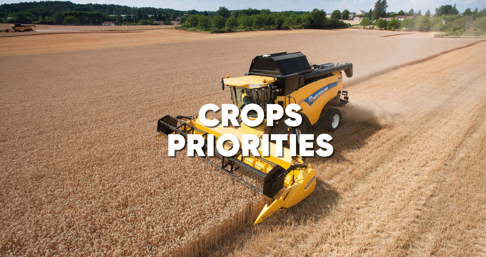 General Election 2019: Priorities for the crops sector