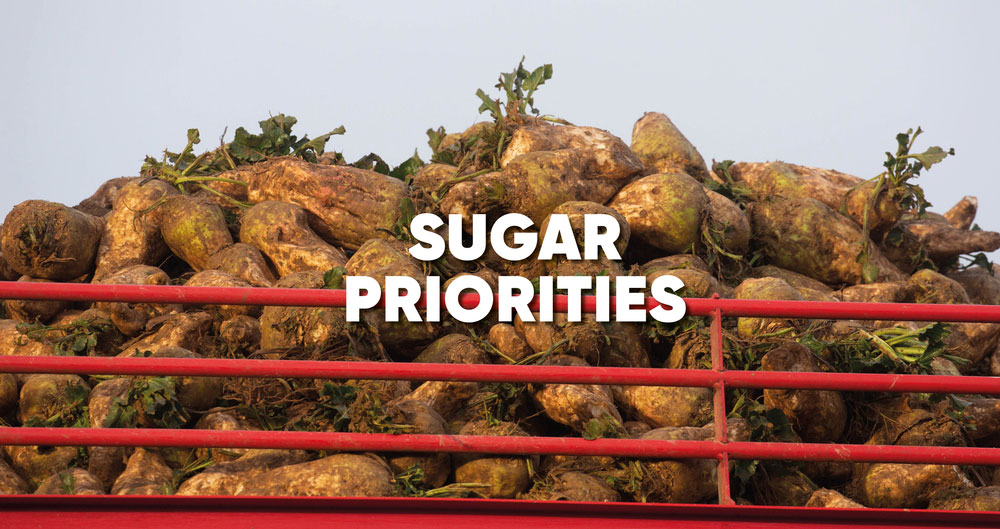 General Election 2019: Priorities for the sugar sector