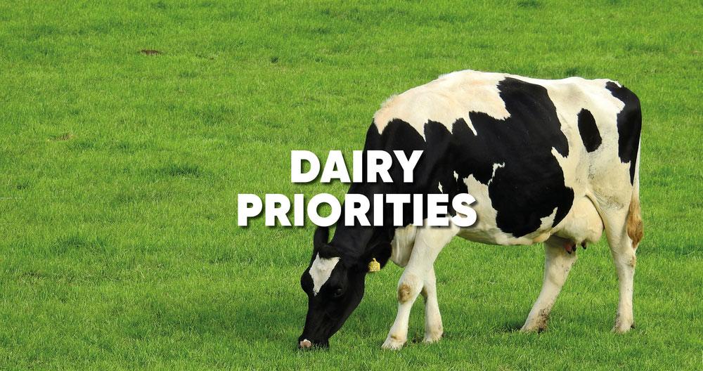 Dairy prirorities General Election