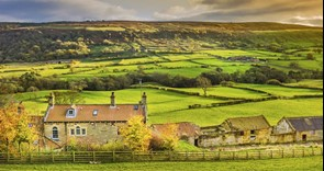 Agriculture Bill: NFU reaction to tenancy reforms