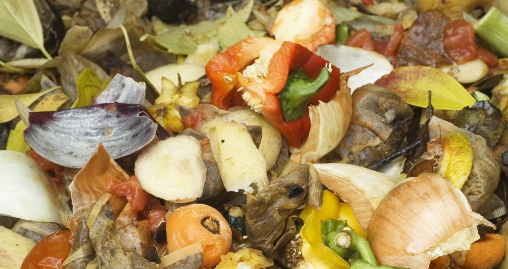 Compost heap, food waste