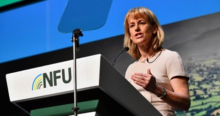 NFU20: British farm standards must be the benchmark in future trade deals