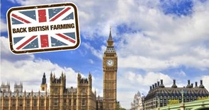 Agriculture Bill returns to Parliament