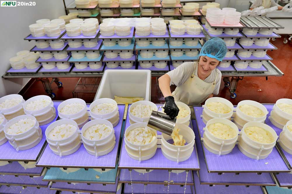 <h4>Cheese making at Fen Farm Dairy</h4> <p>Ema of Fen Farm Dairy pouring whey during the cheese-making process. The farm, near Bungay, is run by Jonny and Dulcie Crickmore, who diversified the original dairy farm with the addition of a pioneering cheese and butter making business. Photo: Nikon D4 + 24mm F2.8 1/200 @ F4 ISO 1250</p> <p>Warren's comments: <em>Another diversification shot - challenging lighting and backdrop as food production can be very clinical in some aspects but I came away happy with this different angle on the Baron Bigod cheese being produced.</em></p>