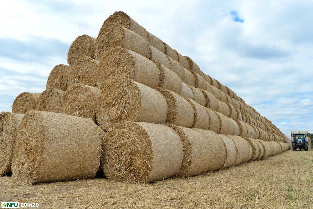 <h4>Great wall of straw at Eyke</h4> <p>Stacking straw bales at the end of harvest at Eyke in east Suffolk, in early September. Farmers grow cereal crops on about 136,000 hectares of land in Suffolk. Photo: Nikon D4 + 24mm F2.8 1/1600 @ F6.3 ISO 500</p> <p>Warren's comments: </em>I spotted four enormous Toblerone-shaped stacks of straw, each about 200 metres long on my way home from the turf shoot. I made my way down a tiny lane and found workers still adding to the huge stacks. Apparently, it had been a bumper year with over 7000 rolls of straw being produced, over double the usual number. It was difficult to show the scale of how much straw was being stacked.</em></p>
