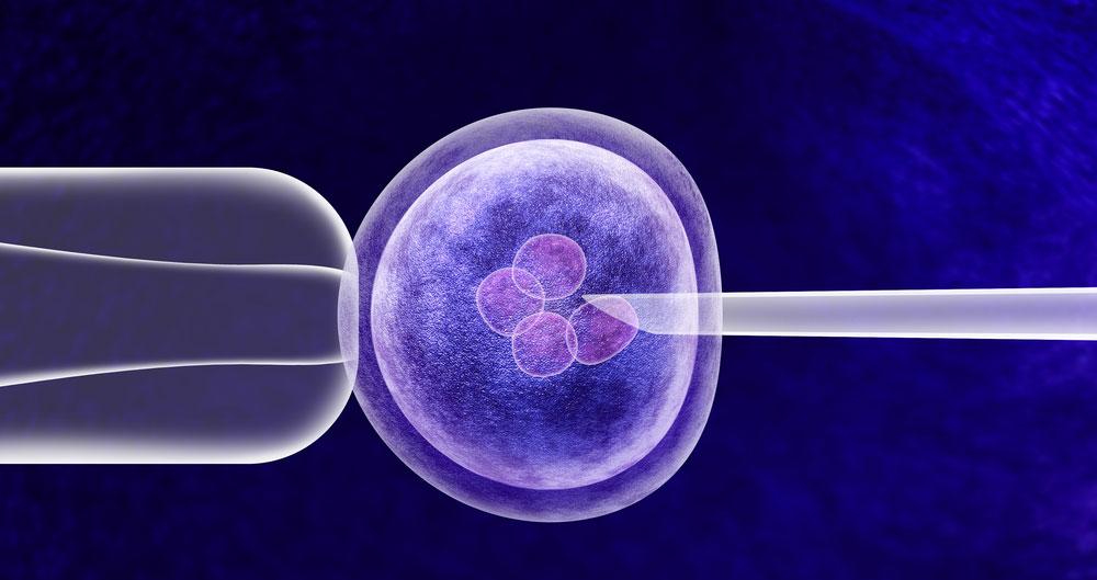 Public consultation this autumn on regulation of gene editing