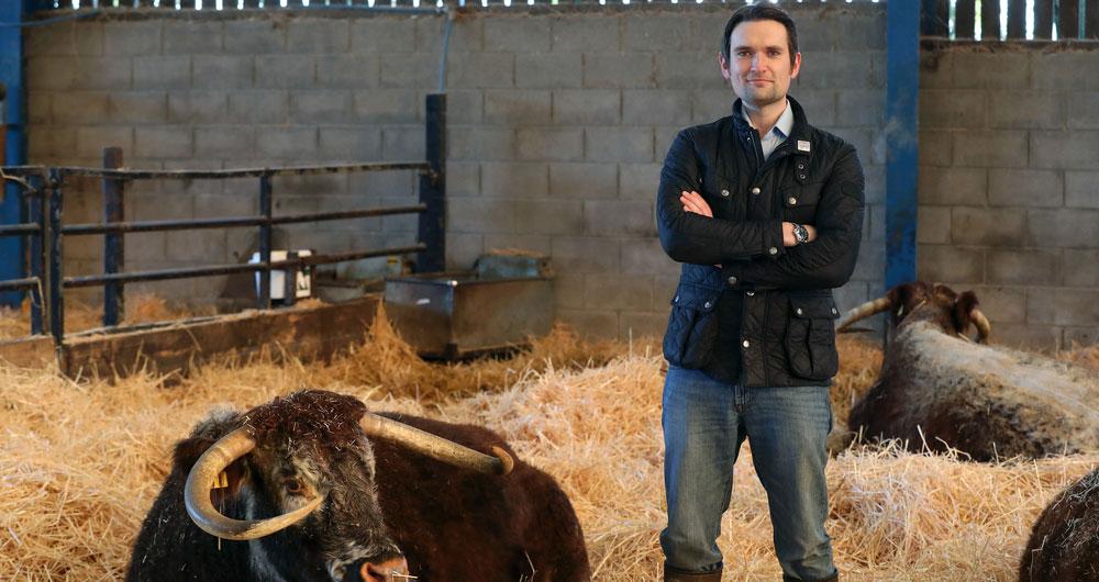 Joe Stanley, livestock farmer