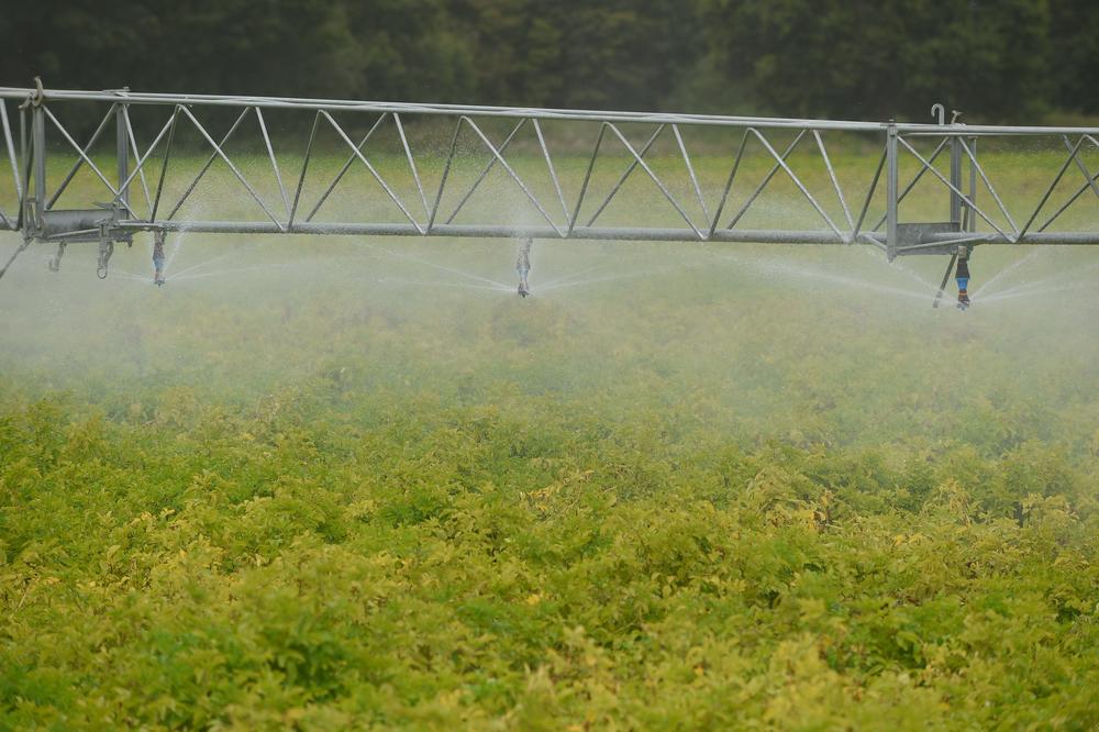 irrigating in Suffolk