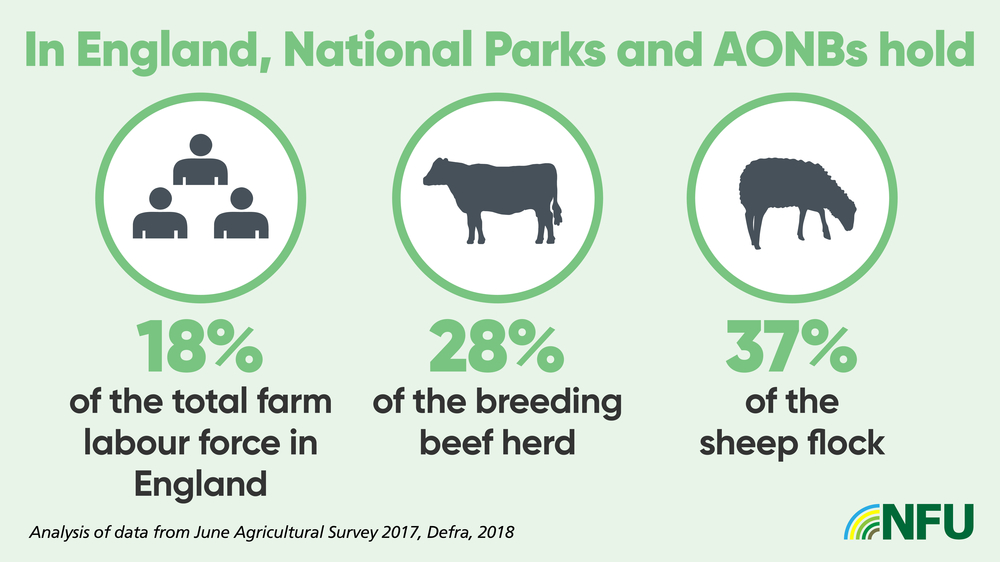 Landscape report infographic