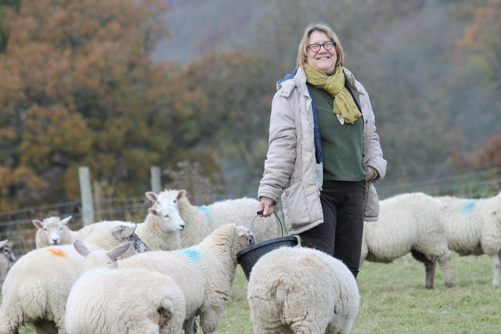 Carol Griffiths on farm