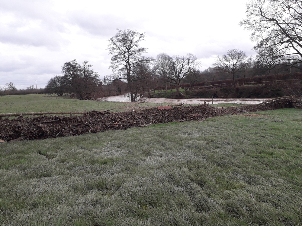 Flooding debris in a Worcestershire field