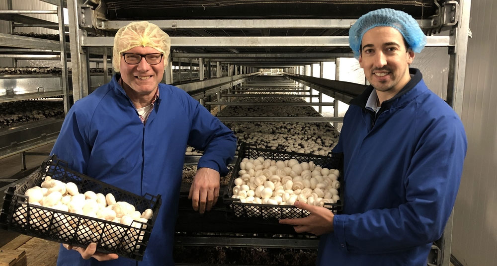 L-R Miles Middlebrook and Ciaran Hughes in the mushroom growing room at Hughes Mushrooms