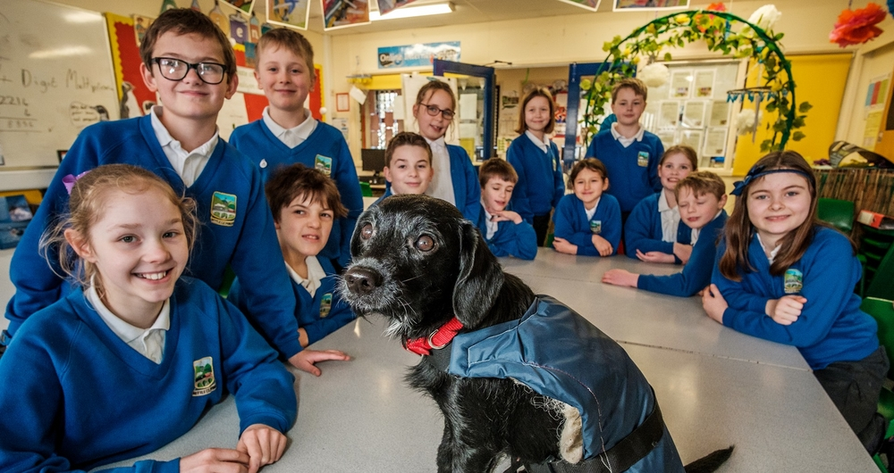 Settle Primary School pupils sitting in their classroom with Selkie the dog on the table modelling the class's wool dog coat design