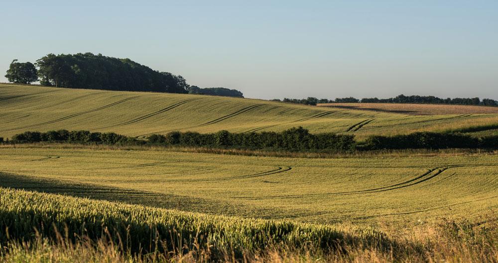 NFU activity: Countryside Productivity Small Grants