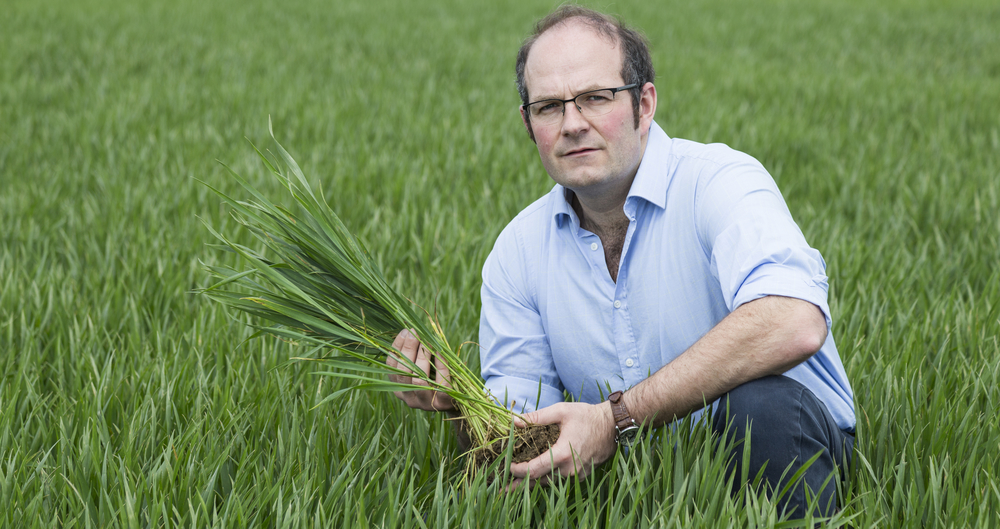 NFU says urgent action is needed to implement seasonal workers scheme