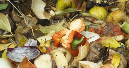 WRAP launches new campaign to tackle food waste
