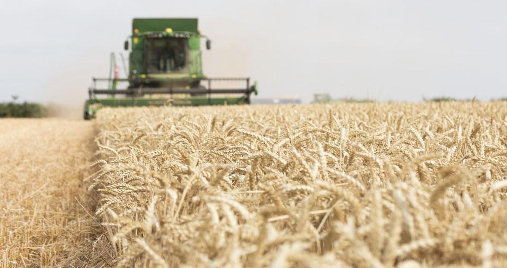 NFU 2020 Harvest Survey - take part now