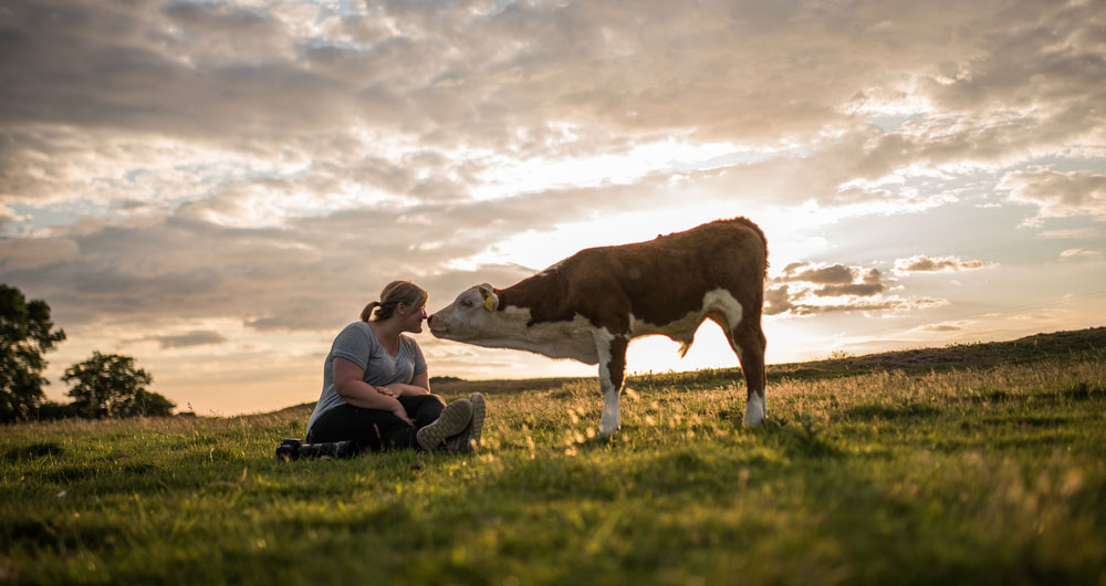 Why animal health and welfare is important to British farmers